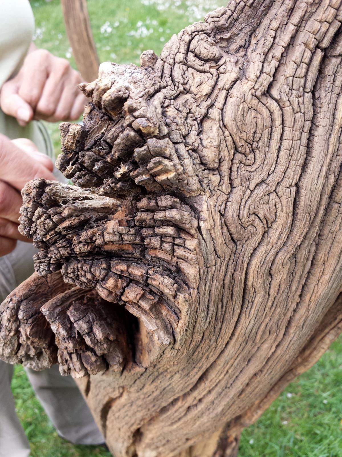 Zaun-Weidepfahl in Arbeit Detail