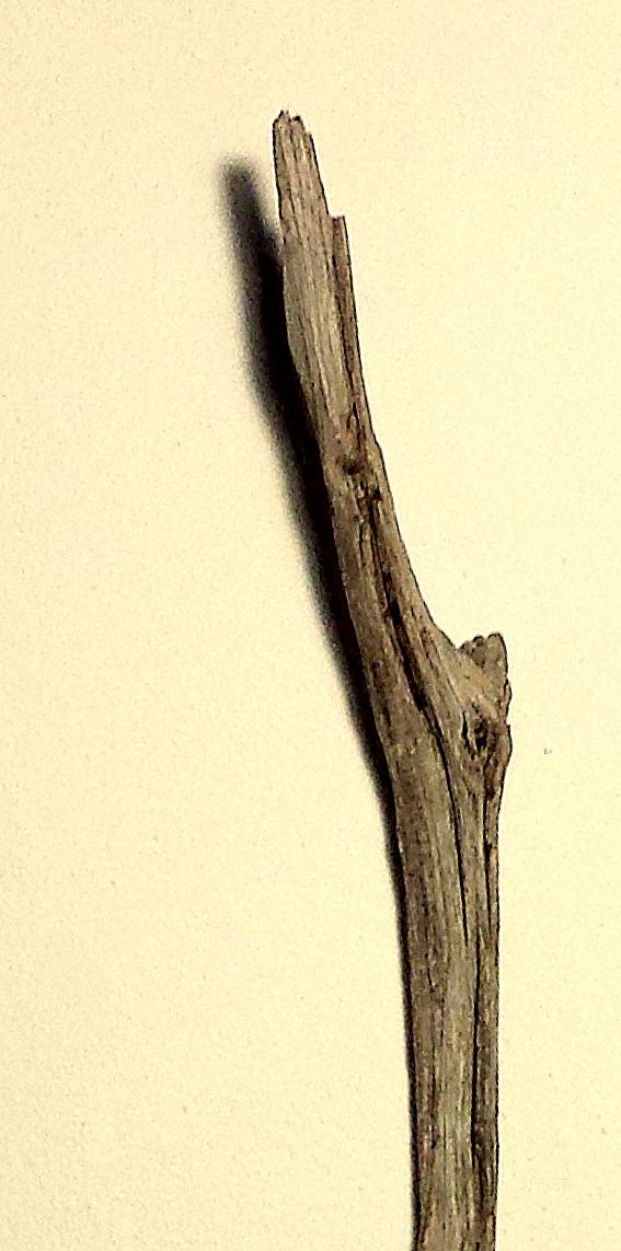 Fundholz Aufrichtung und Ausrichtung 5